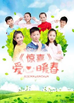 《惊喜·爱心暖春》2017年中国大陆剧情电影在线观看