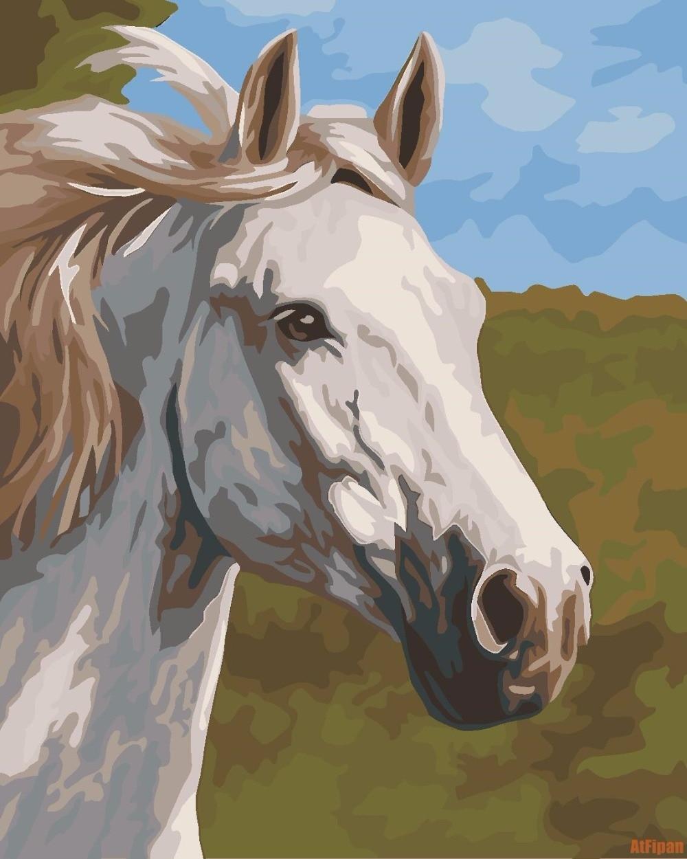 Blanc Tête de Cheval DIY Encadrée Peinture À L'huile Par Numéros Animaux Photos Toile Peinture Pour Salon Wall Art Décor À La Maison