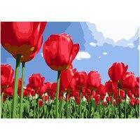 Tulipán rojo flores decoración de la habitación imagen por números kits dibujo pintura en algodón regalo único Home decor Wall Artwork 2,0