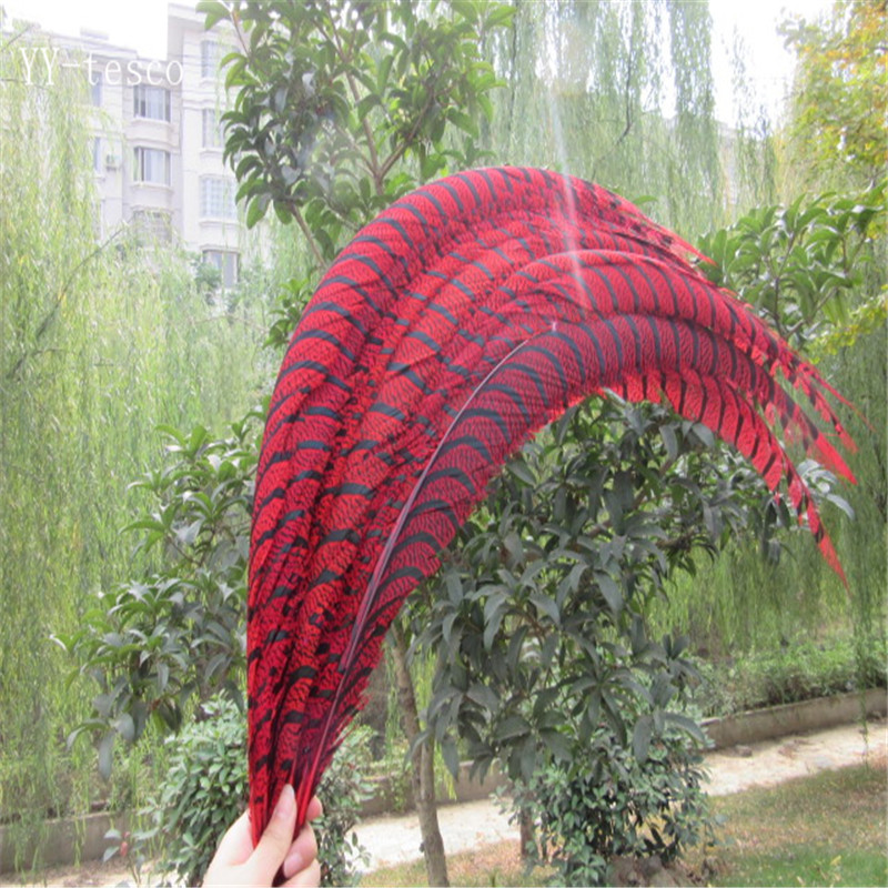 20pcs 32-36 inche/80-90cm Red Lady Amherst Pheasant Feather pheasant feathers for carnival party costumes cosplay decoration