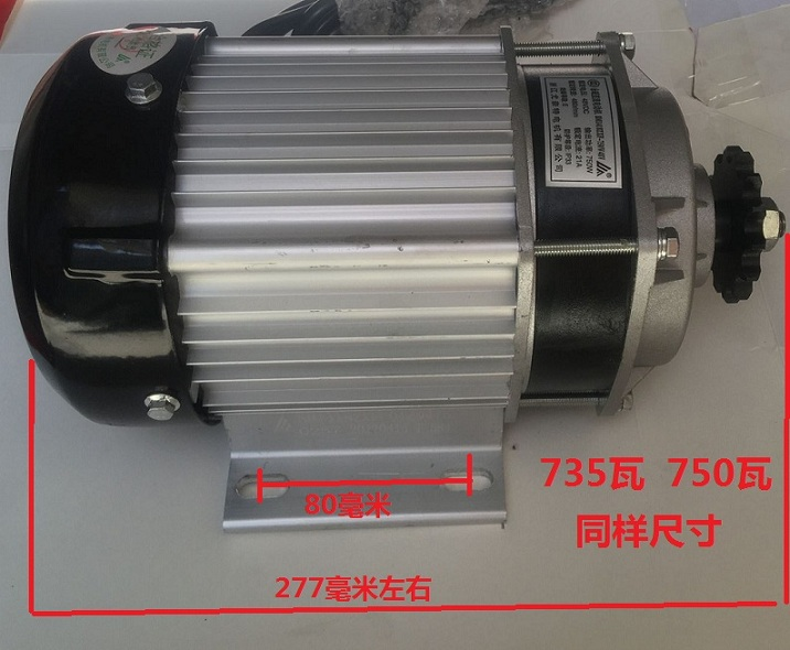 Official Website Permanent Magnet Dc Speed Reduction Brushless Motor 750w/48v/60v Electric Tricycle Accessories Good For Antipyretic And Throat Soother Home Improvement Motors & Parts