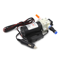 DC 12V/24V Diesel Fuel Oil Pump Oil Extractor Transfer Pump Gasoline Professional Electric Oil Pump Powered By Car Battery