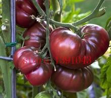 200 pcs dark red Tomato Seeds bonsai Vegetable Fruit Lycopersicon Esculentum seeds Non-GMO  Vegetable seeds for home garden