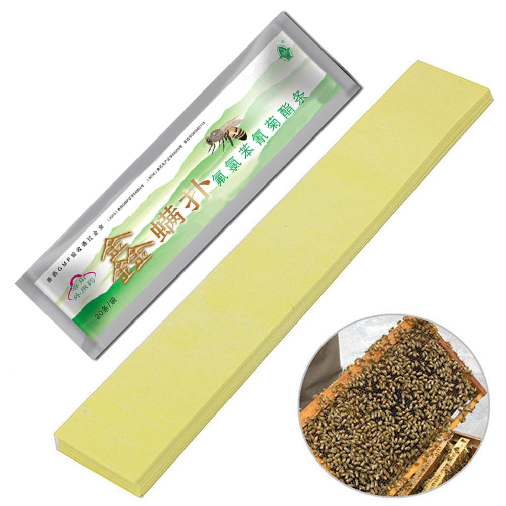 Image 3 - Professional Acaricide Against The Bee Mite Strip Beekeeping Medicine Bee Varroa Mite Killer & Control Beekeeping Farm Medicines-in Beekeeping Tools from Home & Garden