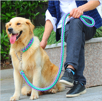 High Quality Upgraded Multicolor Adjust Collar Rope Large Dog Leashes P Chain Pet Traction Rope Collar