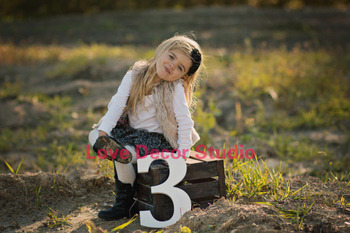 free shipping Number Three 3 Sign Age Photo Prop - Wooden pvc  Age Numbers for Children Photos - Large Wooden pvc Numbers