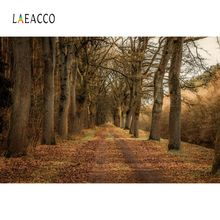 Laeacco Autume Fallen Leaves Tree Way Natural Scenic Photographic Backgrounds Photography Backdrops Photocall Photo Studio