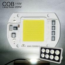 COB LED Light Matrix Diode Lamp High Power Smart IC Chip 50W 30W 20W 110V 220V Outdoor Light Bulbs For DIY Spotlight Floodlight