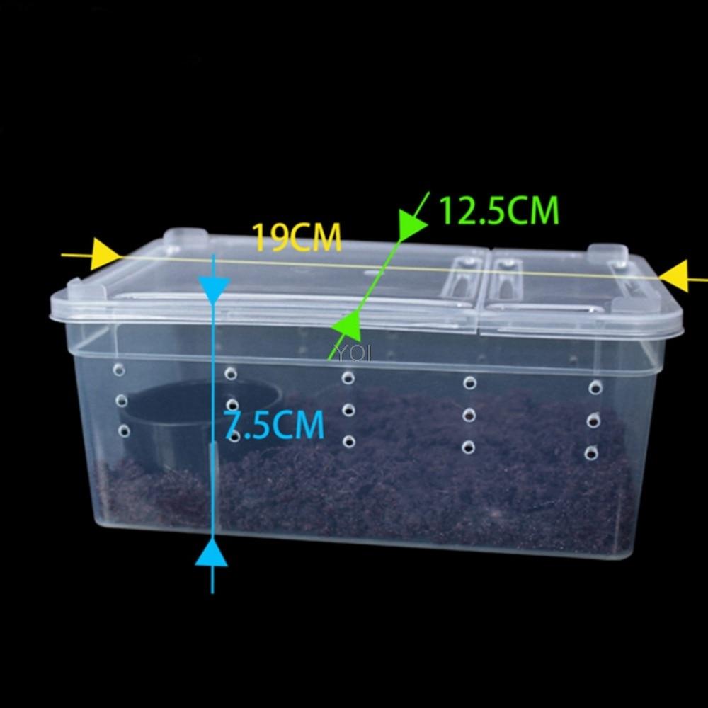 Terrarium Transparent Plastic Box New Arrivals Reptiles & Amphibians Terrariums