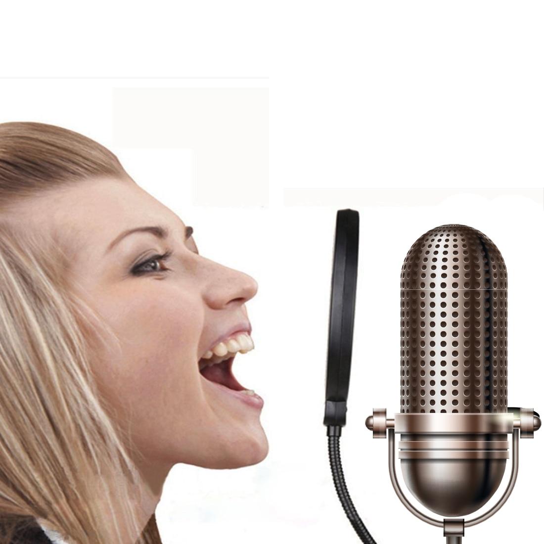 Actief Centechia Flexibele Zwanenhals Teruggeschrokken Filter Double Layer Studio Microfoon Mic Wind Screen Mask Microfoon Accessoires Ziekten Voorkomen En Genezen