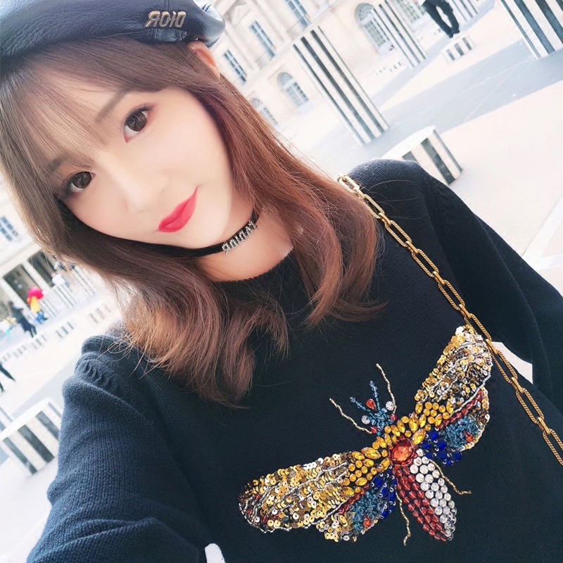 18 Luxury Brand Autumn Winter Black Sweaters and Pullovers Knitted Women Long Sleeve Dragonfly Diamond Jumper Tops Clothes 7