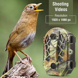 Hunting Digital Cameras Infrar