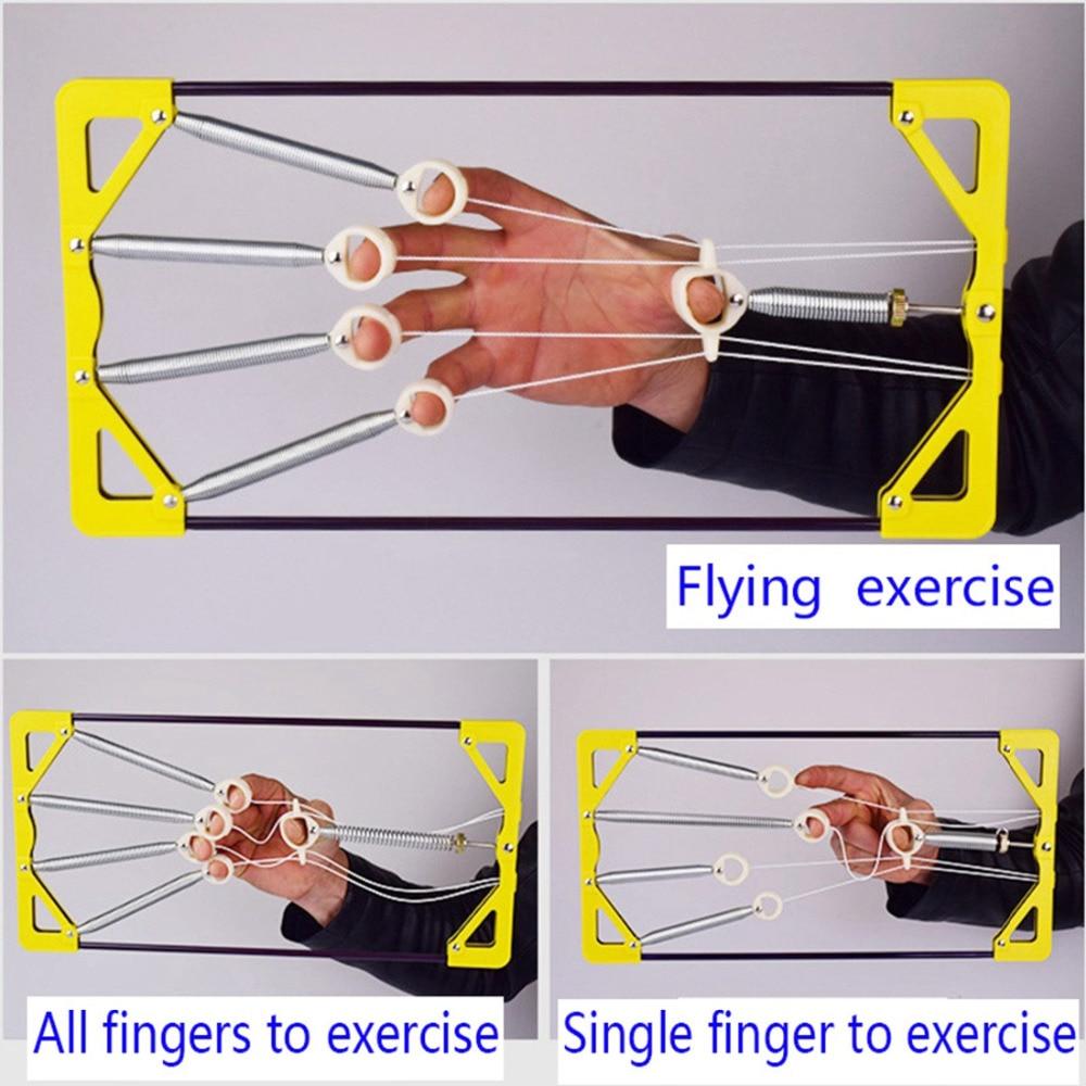 Wunderbar Muskeln Des Unterarms Und Der Hand Bilder - Physiologie ...