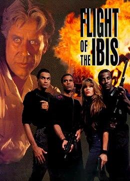 《猎枭行动》1996年特立尼达和多巴哥动作,犯罪,冒险电影在线观看