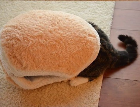 Hamburger Pet Beds For Cat Cutest Comfortable Litter Shell Removable Thermal Hiding Burger Bun Bed Gatos Cats Procucts In Mats From Home