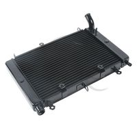Motorcycle Black Replacement Radiator Cooler Cooling For YAMAHA FZS1000 1998 2003 1999 00 01 2002