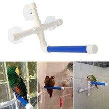 Домашние птицы настенные игрушки на присоске лапа шлифовальный стенд душ складные окуни попугай