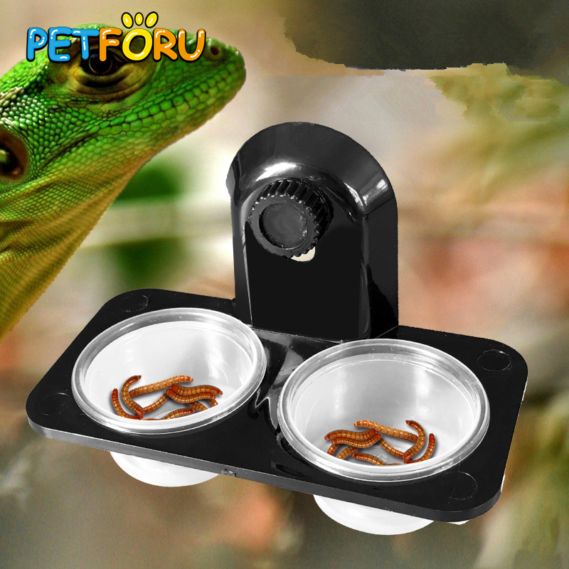 PETFORU Reptile Feeder Single Double Feeding Bowl Food Water Insects Spider Breeding Tank Dispenser Feeding Screw Suction Cup food