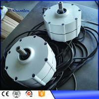 Generador Eolico 800w 24v 48v Low Rpm Permanent Magnet Generator For Wind Power And Hydro Power, Made By Magnetic(pmg)