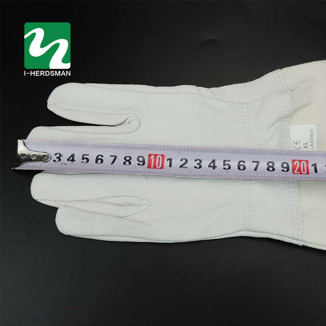 Beekeeping Tools Really Sheepskin Gloves breathable material Bee Tools Universal Model Canvas gloves We sell cut honey knife