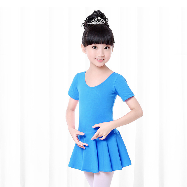 Girls Ballet Dance Dress (3)