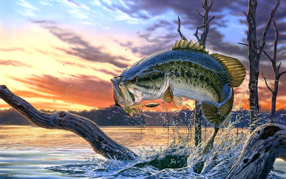 Large Mouth Bass Fishing Lake Poster Sunset Scenery Landscape Painting On Canvas For Wall Art Decor Paintings On Canvas Landscape Paintingsunset Landscape Paintings Aliexpress