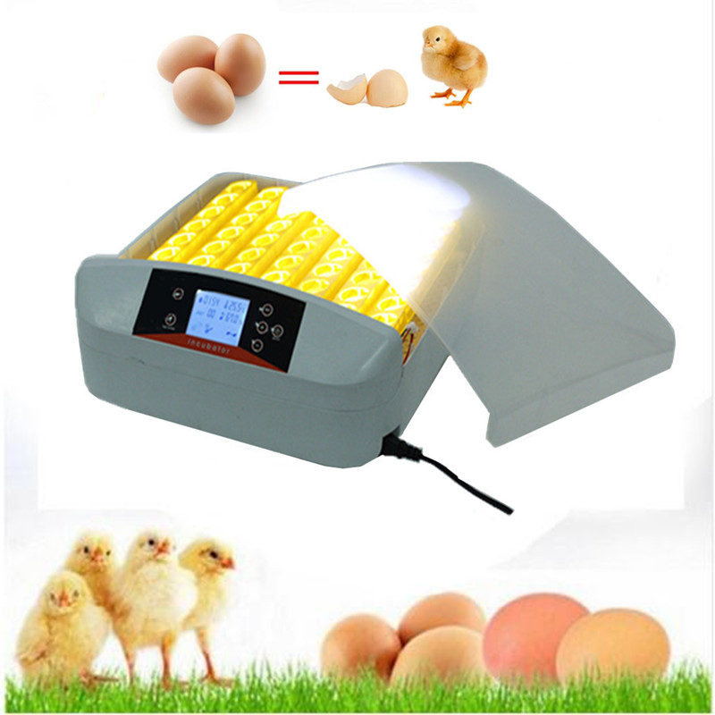 Best Farm   Hatchery Machine 56 Egg Hatchers Cheap Price Chicken Automatic Egg Incubator China for Sale Birds Quail Brooder top sale household farm egg incubators 24 egg incubators for led display turner for sale