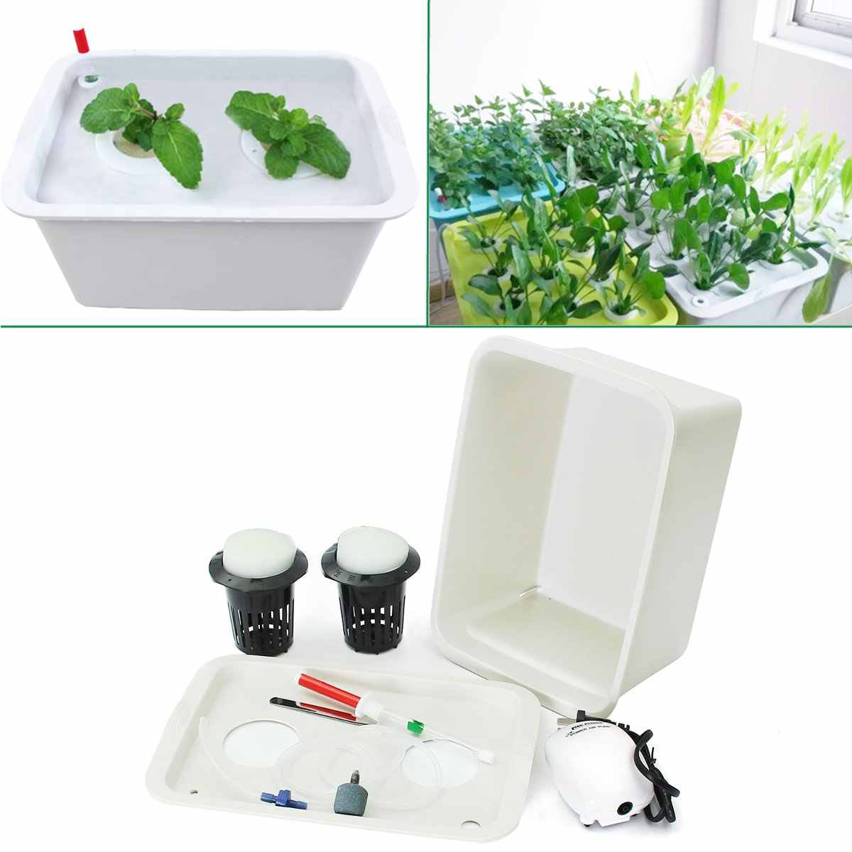 220V Hydroponic System Nursery Pots Plants Grow Kit Water Planting Soilless 2 Holes Garden Home Indoor Cabinet Case