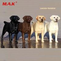 mrz025-16-scale-animal-model-scene-acc-4-colors-mrz-no25-labrador-retriever-dog-model-toys-001002003004-for-collection