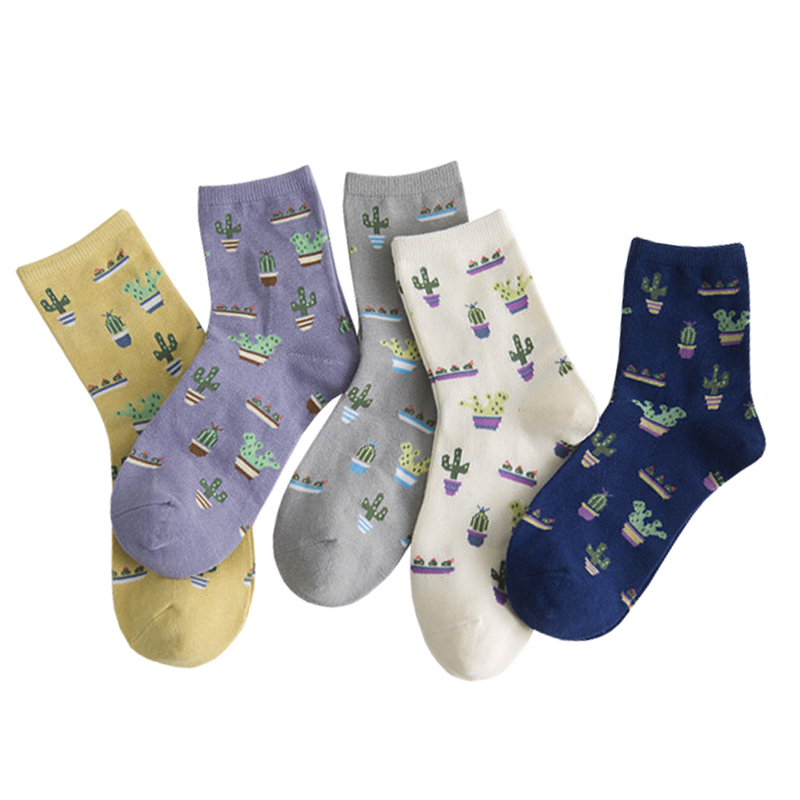 New Foot Cacti Socks Fashion Daily Plant Ball Cactus Harajuku Lilac Lemon Fleshy Succulents Girlfriend Gift Present Garden