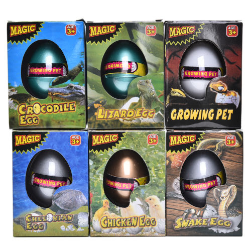 Funny Novelty Water Expansion Hatching <font><b>Egg</b></font> Animal Kids Babies <font><b>Toy</b></font> Children's Box Large <font><b>Dinosaur</b></font> <font><b>Eggs</b></font> Children <font><b>Toys</b></font> image