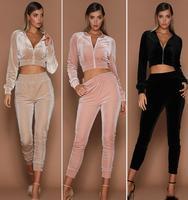 JOYINPARTY Velvet Sets Casual Tracksuit 2017 New Autumn Women O Neck Sporting Suit Velvet Two Pieces