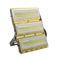 LED Flood Light Waterproof Outdoor Lighting High Brightness COB Spotlight Chrismas Garden Wall Lamp 50W 100W