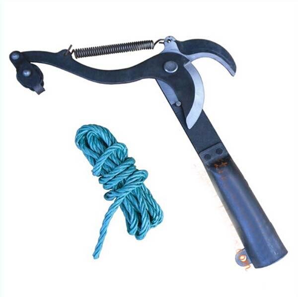 бесплатная доставка филиал averruncator 20см отрезать плодовое дерево-ножницы комплектовщик садовые инструменты KF348