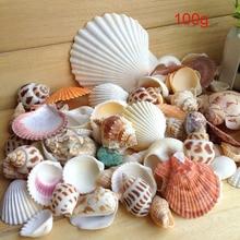100 г морской пляж раковины смешанный аквариум декорация ландшафт для аквариума прочный ремесло MF999