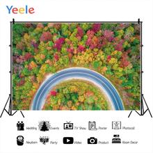 Yeele High Resolution Forest Motor Road Professional Wedding Photography Backdrops Photographic Backgrounds For The Photo Studio