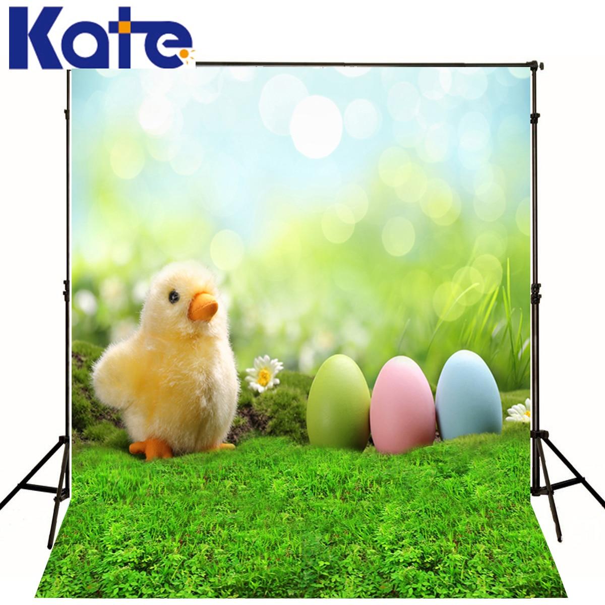 Famille fond couleur oeufs vert herbe photographie bébé toile de fond bleu ciel soleil poussin numérique Studio fond