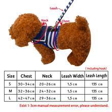 Dog Clothes Teddy