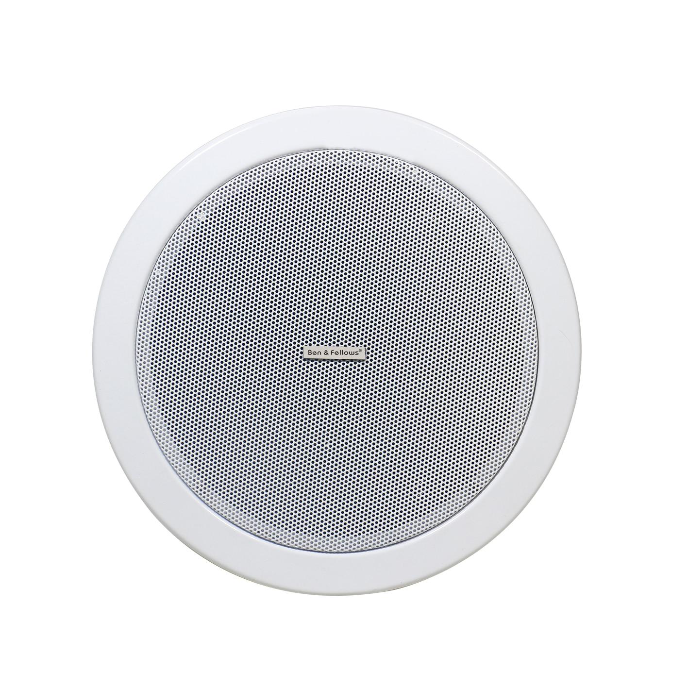Ben & Fellows Dante network In ceiling Speaker Metal 15W 6 inch with RJ45 port, supports POE power supply Dante speaker 1