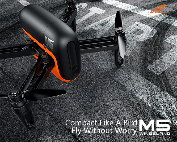 M5 GPS Brushless FPV Drone With 720P Camera