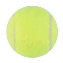 Pelotas de tenis amarillas Torneo Deportivo perro de playa de Cricket divertido al aire libre Ideal para la práctica del tenis de Cricket de playa o playa/etc