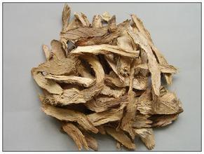 500g de ervas secas homalomena rizoma homalomena cuidados de saúde erva