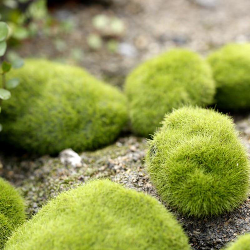 1PC Artificial Grass Fairy Garden Miniatures Moss Stone Desktop Bottle Garden Resin Crafts Home Decoration