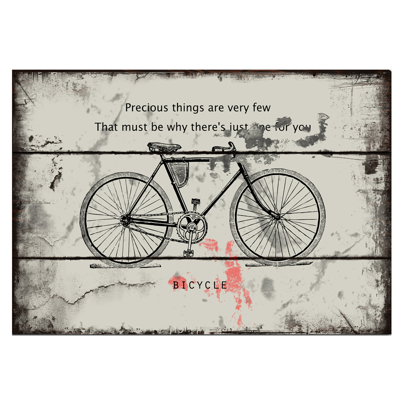Precious things are very few. That must be why theres just one for you. Bicycle! vintage metal tin signs the wall decoration