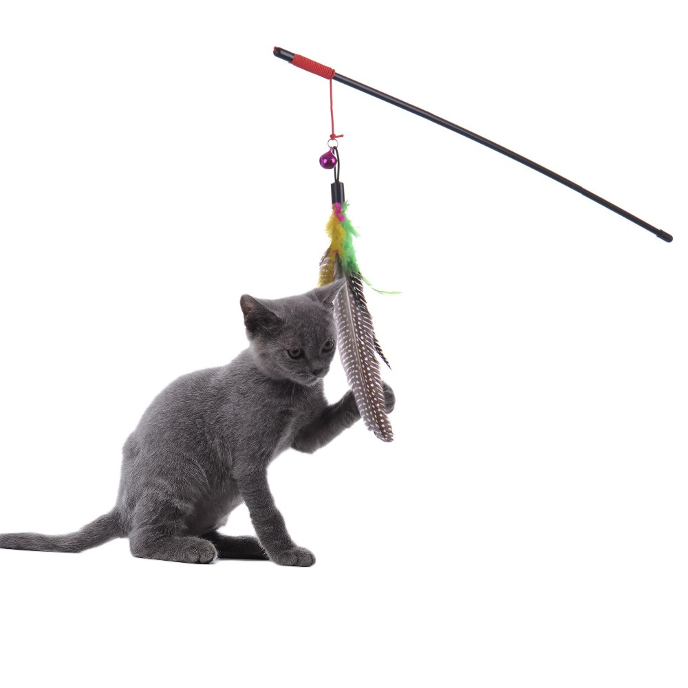 Pet cat toy Cute Design Steel Wire Feather Teaser Wand Plastic Toy for cats Color Multi Products For pet