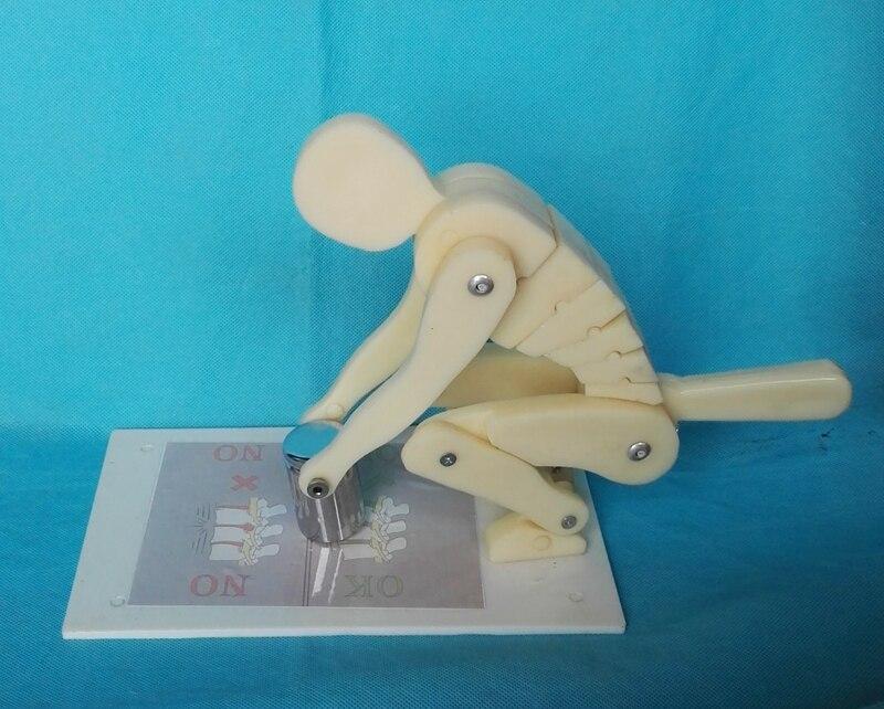 Umani di sollevamento pesi forza dimostrazione modello della colonna vertebrale Modello di insegnamento modello medicoUmani di sollevamento pesi forza dimostrazione modello della colonna vertebrale Modello di insegnamento modello medico