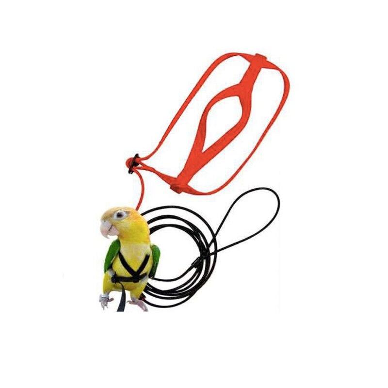 Anti-mordida voando treinamento corda papagaio pássaro animal de estimação trela kits ultralight arreios trela macio portátil brinquedos para animais de estimação