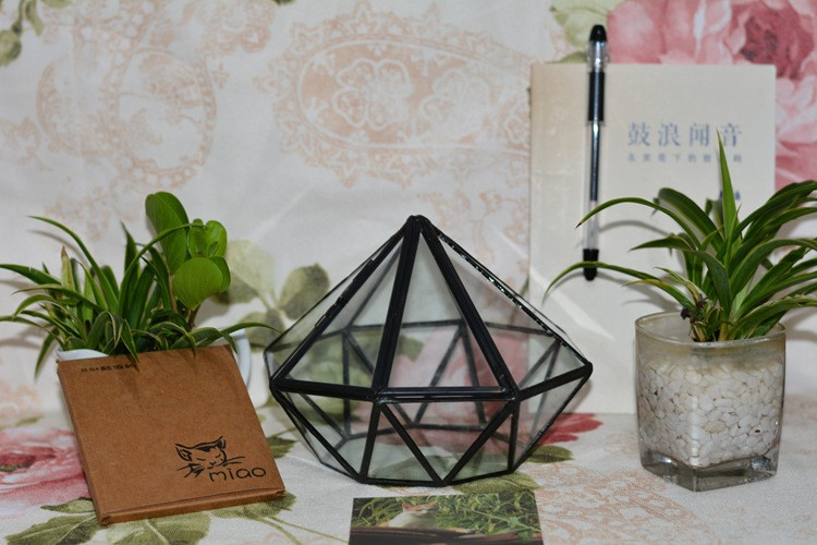 Diamond Geometric Polyhedron Glass Terrarium1