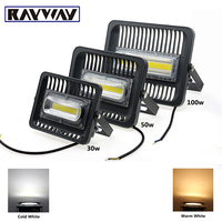 RAYWAY 110V 220V LED Flood Light 30W 50W 100W COB Exterior Spotlight IP65 LED Outdoor Light