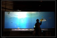 Fast Shipping 42 Inch Usb Touch Screen Film Dual Interactive Touch Foil With USB For Windows